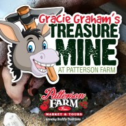 Gracie Graham's Treasure Mine