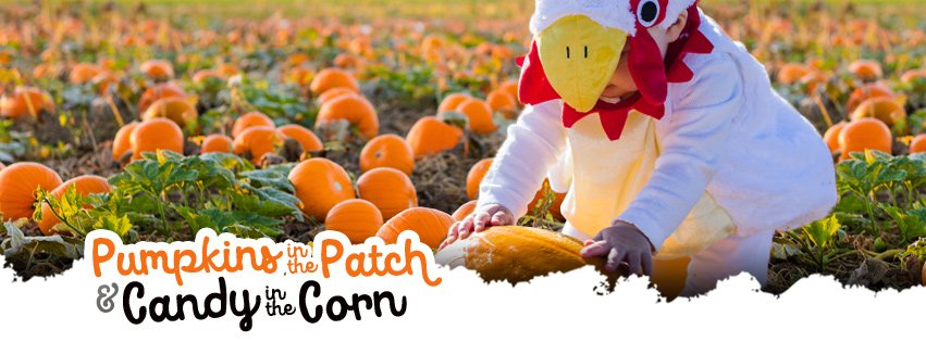 Pumpkins in the Patch and Candy in the Corn, October 28 & 29