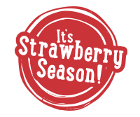 Strawberry Season Opens April 14th, 2018!