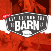 All Around The Barn