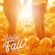 Fall Fun on The Farm and More!