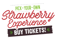 Pick-Your-Own Strawberries, Get Tickets Now!